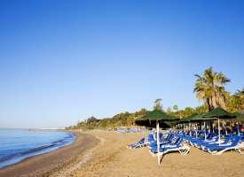 Campamentos de verano en Marbella Alborán (De 13 a 18 años). Campamentos de ingles