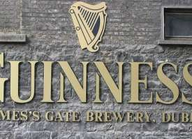 Activités de  Dublin Griffith