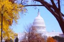 Oferta para cursos de Inglés en Washington